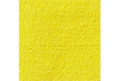 51250:京上 カナリア黄