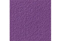 053000:京上 紫