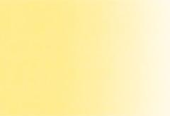 914:黄肌