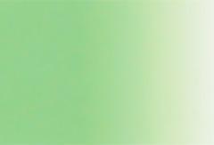 966:白緑